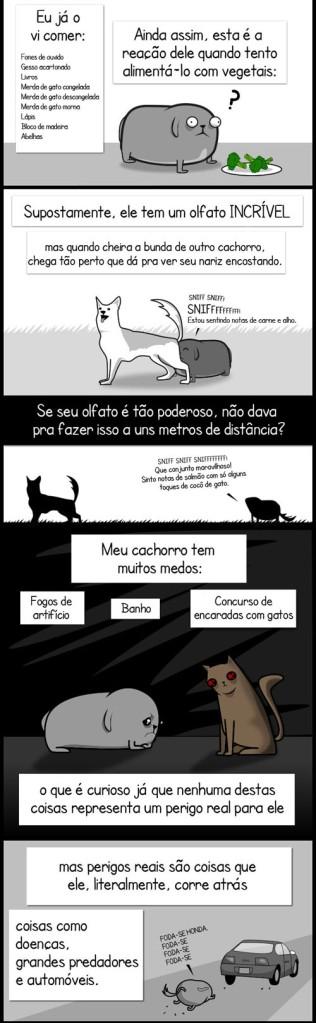 Meu cachorro Paradoxo (04)