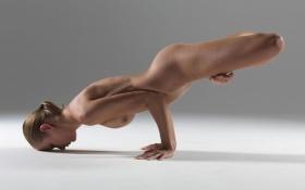 Yoga Arm Balance Pose on Hips, Full Lotus