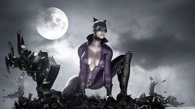 Mulher Gato2