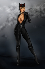 Mulher Gato4